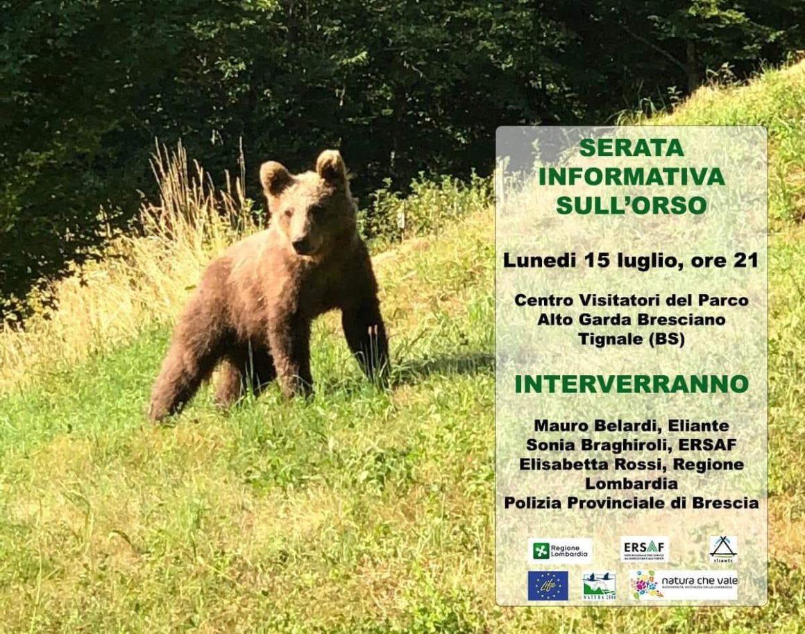 Serata informativa sull'orso